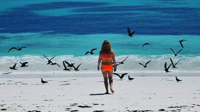 bird island lesbian personals Meet bird island singles online & chat in the forums dhu is a 100% free dating site to find personals & casual encounters in bird island.